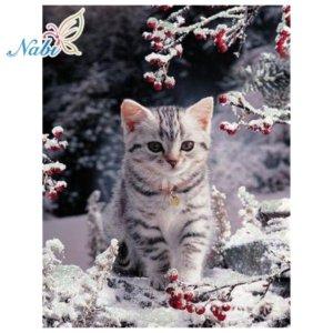 Diamond embroidery animals cat
